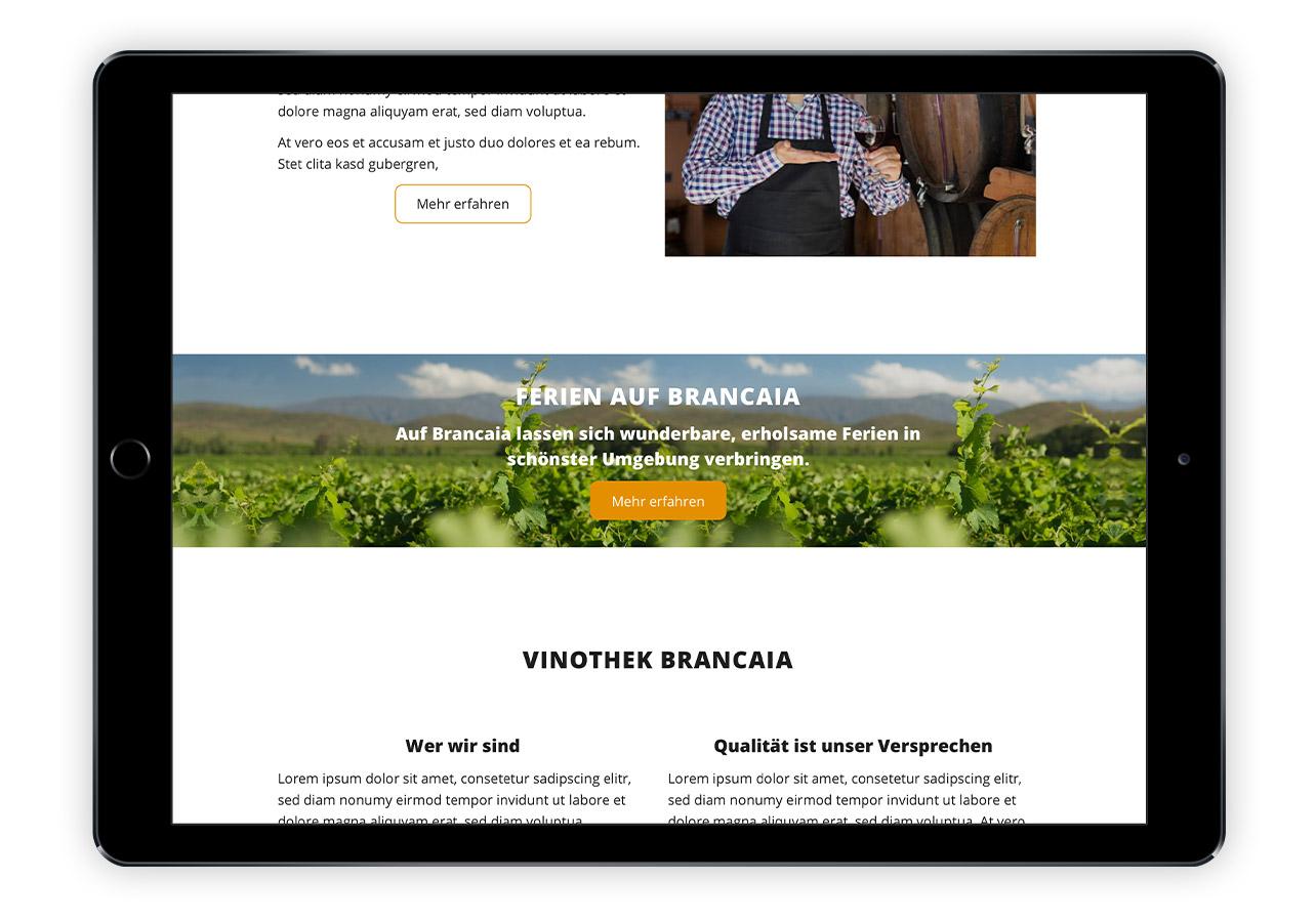 Abbildung von Startseite zu Brancaia-Weinshops mit Bild in voller Seitenbreite